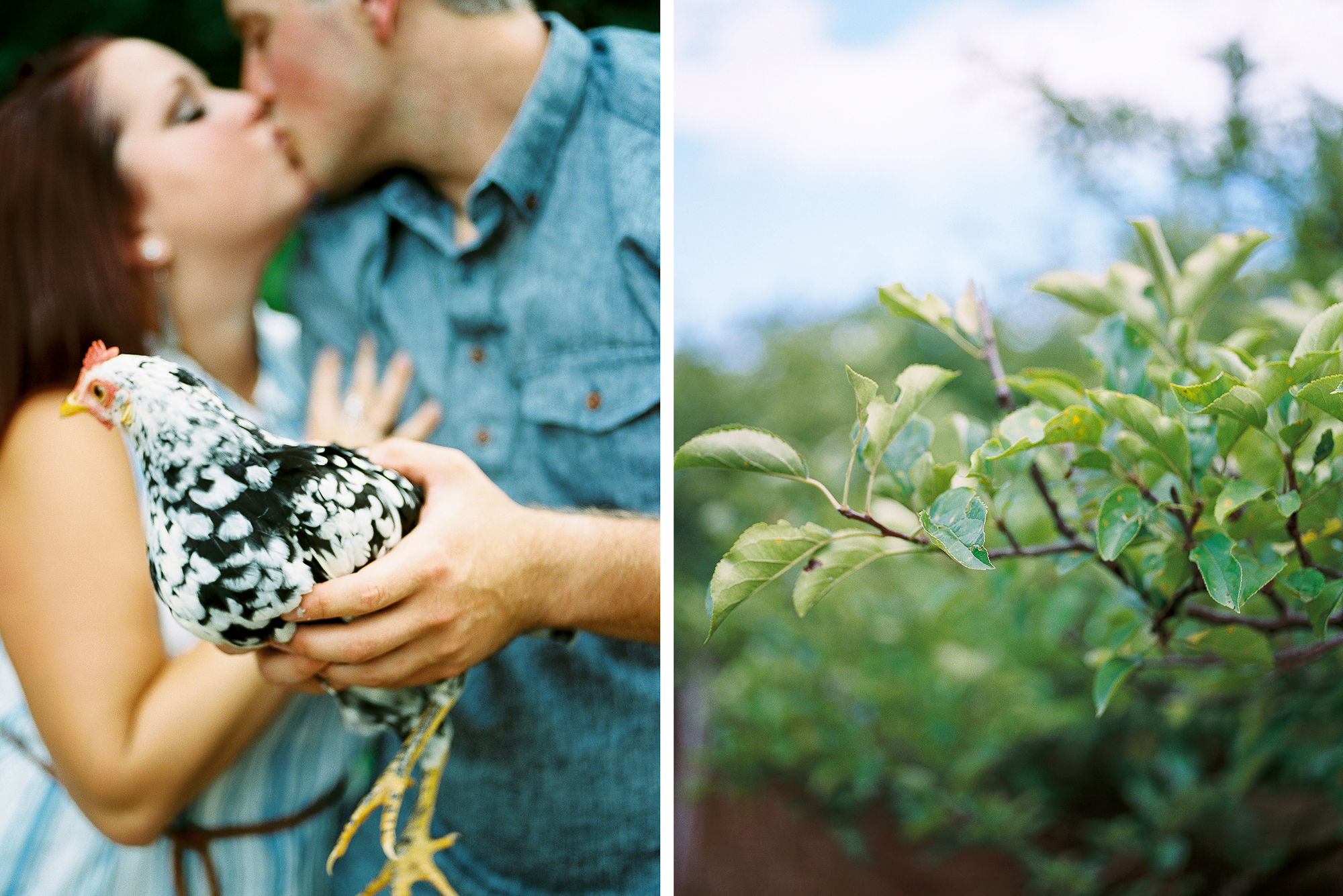 Alexandra-Elise-Photography-Ali-Reed-Film-Farm-Engagement-Session-010